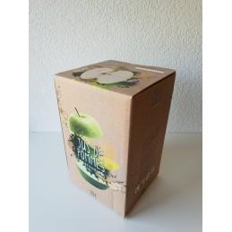 Bag-in-Box 10 Litres Pomme Flexo brun,