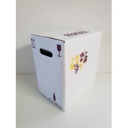 Carton de 12 x 50 cl debout